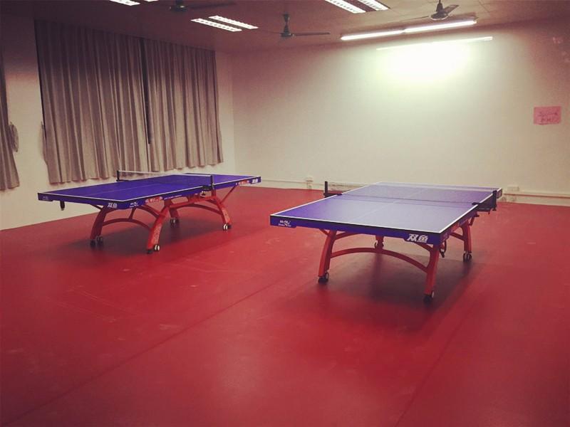 石龙中学乒乓球台.jpg